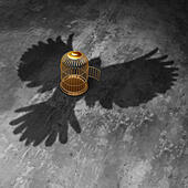 Cage freedom concept as an open birdcage with a giant bird cast shadow flying above with open wings as a symbol of liberty and j - Stock Image - EFFXKD