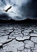 A bird flies over a desolate landscape - Stock Image - CYH5T9