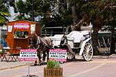 Horse and carriage rides, Finikoudas, Larnaca, Cyprus - Stock Image - EANBGN