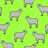 seamless wallpaper with sheep and rams - Stock Image - DNM11F