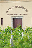 chateau trottevieille saint emilion bordeaux france - Stock Image - BEAW13
