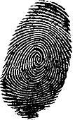Detailed fingerprint - Stock Image - DNN9JJ