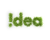 Idea grass patch - creativity concept - Stock Image - CTFECC