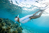 Snorkeler views coral reef - Stock Image - CPX33G