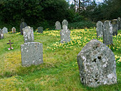 Quaker graveyard saved and restored by Tom Pierce famous through the song Widdecombe Fair Sticklepath Devon - Stock Image - AT3275