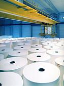 paper mill - Stock Image - C4JG3D