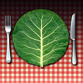 Vegetarian cuisine as a healthy lifestyle food concept with a fork and knife place setting as a green vegetable leaf shaped as a - Stock Image - DJ2D4P
