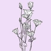 vector flower background - Stock Image - DNKXJ1