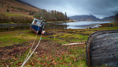 A moody,morning at Loch Long, Lochalsh, Scotland, United Kingdom, Europe - Stock Image - CFDT5G
