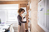 Businesswoman working in office - Stock Image - CT3K5H