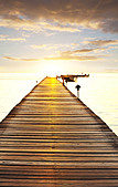 Boardwalk on beach - Stock Image - CYJRDM