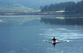 Man rowing scull on lake - Stock Image - E185MY