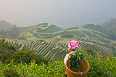 Zhuang girl carrying basket with rice terraces Longsheng Guangxi China - Stock Image - B5FXHE