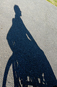Shadow of a Man in a Wheelchair Copy Space - Stock Image - B4BEFD