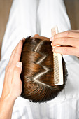 high angle view of hairdresser using comb - Stock Image - BC02DJ