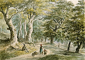 fine arts, Dorner, Johann Jakob, the Younger (1775 - 1852), forrest near Dietramszell, watercolour, 21,6x30 cm, private collecti - Stock Image - A6RWTR