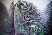 Fingerprint on screen in forensic lab - Stock Image - CXWPXP