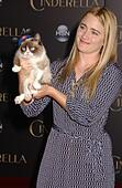 Los Angeles, California, USA. 1st March, 2015. Grumpy Cat attends the Premiere Of ''Cinderella'''' at .the El Capitan Theater in Los Angeles, Ca on March 1, 2015. 2015. © Phil Roach/Globe Photos/ZUMA Wire/Alamy Live News - Stock Image - EGT2EE