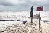 Dawlish, Devon, UK. 13th November, 2014. UK weather. Storms and wind whip up sea foam at Dawlish. Credit nidpor/Alamy Live News  - Stock Image - EAEF1H