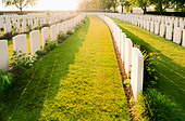 White headstones in graveyard - Stock Image - C92EH9