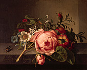 """""""fine arts, Ruysch, Rachel, (1664 - 12.8.1750), painting, """"Rosenzweig mit Käfer und Biene"""", Öffentliche Kunstsammlung, Basel, - Stock Image - AFNBJB"""
