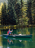 60 ish man paddling a canoe with his emotional support dogs including a Bernese Mountain Dog and a Great Pyrenees - Stock Image - BAPT6P