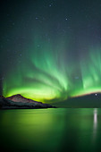 Aurora Borealis The Northern Lights fill the sky at Kvaloya in the Arctic Circle near Tromso, Northern Norway - Stock Image - CRXCEY
