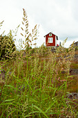 one red cottage - Stock Image - AX19H8