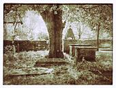 Infrared View of an English Church Graveyard during Springtime. Large tree in centre, tombs & gravestones surround. - Stock Image - S01T9F