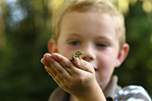 Young boy holding small tree frog - Stock Image - B3Y2HY