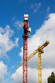 Red and Yellow construction cranes, Bremen, Germany - Stock Image - E6RAWY