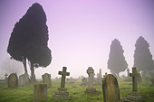 Photo of a grave yard in the mist - Stock Image - ACFTWB