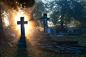 Cross headstones lit up in the early morning sunlight through mist. England - Stock Image - C6PA1D