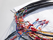 Detail of wiring loom cables - Stock Image - C3RB19