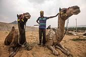 Rajasthan, India. 30th Oct, 2014. A man poses for photos with his camels at a market on the day before the Camel Festival in Pushkar of Rajasthan, India, Oct. 30, 2014. © Xinhua/Alamy Live News - Stock Image - E9NC52