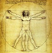 Vitruvian Man by Leonardo da Vinci - Stock Image - A9W5XD