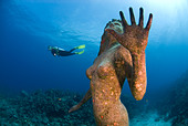 Mermaid Sculpture and Diver Grand Cayman Caribbean Sea Cayman Islands - Stock Image - B42N04