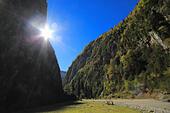 Caucasus mountains, Abkhazia, Georgia - Stock Image - EFN86P