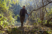Man walking in forest - Stock Image - CEFFE8