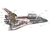 Space Shuttle orbiter diagram - Stock Image - C2N1TG