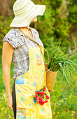 Happy woman gardener working on field, young female holding basket, girl growing organic green vegetables and fruits - Stock Image - CR9CN2