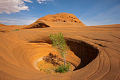 USA, Utah, Grand Staircase Escalante National Monument, Dance Hall Rock, Rocky landscape - Stock Image - C5TMXF