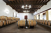 barrel aging cellar chateau trottevieille saint emilion bordeaux france - Stock Image - BEAW43