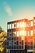 sunny office - Stock Image - DA0H1A