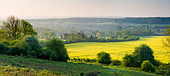 Countryside at Chilworth, Surrey, UK - Stock Image - C36Y1P