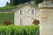 chateau pavie saint emilion bordeaux france - Stock Image - BEATYB