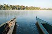 A wooden canoe made of Eucylptus tree floats in the amazon river and connecting tributary rivers in the rainforest. - Stock Image - BXD70H