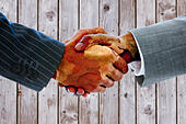 Composite image of business people shaking hands - Stock Image - EW56FM