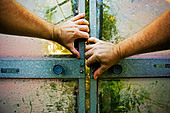Man tries to open old glasshouse sliding doors - Stock Image - AYR63T