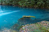 Blue Lake located in the mountains of Abkhazia - Stock Image - E49B46